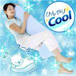 お得なEco&Cool(エコアンドクール)3点セット 【3個セット】