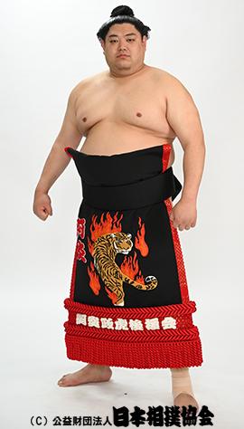 力士プロフィール - 阿炎 政虎 - 日本相撲協会公式サイト