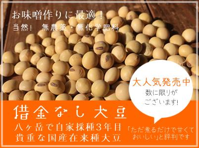借金なし大豆,国産無農薬大豆,国産有機大豆