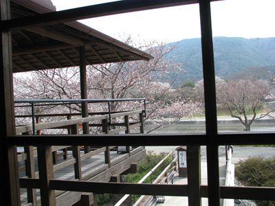 春の五十鈴茶屋